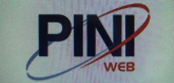 PO4016 Piniweb